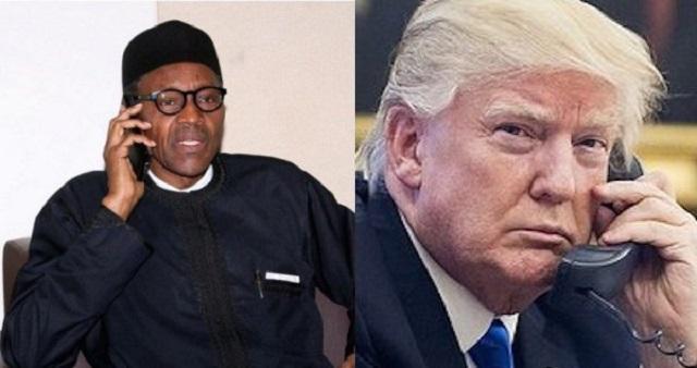 Buhari and Trump STB